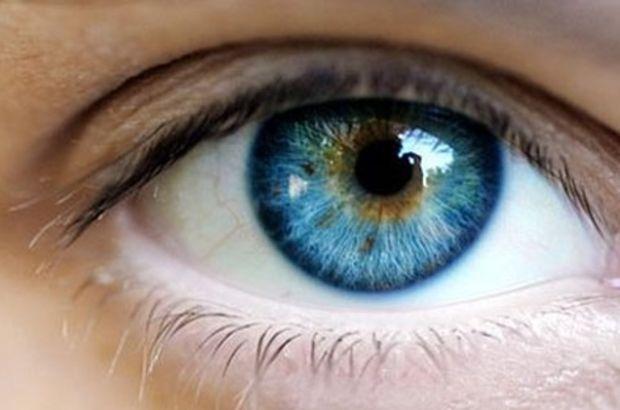 Görme kavramı, gözün yapısı ve göz hastalıkları