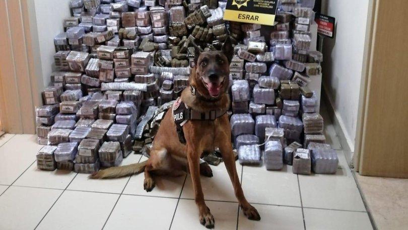 Lojistik firmasına uyuşturucu operasyonu!
