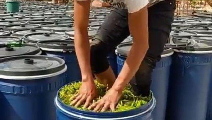 Çanakkale'de, çalışanın ayaklarıyla biber ezdiği işletmeye yaptırım uygulandı
