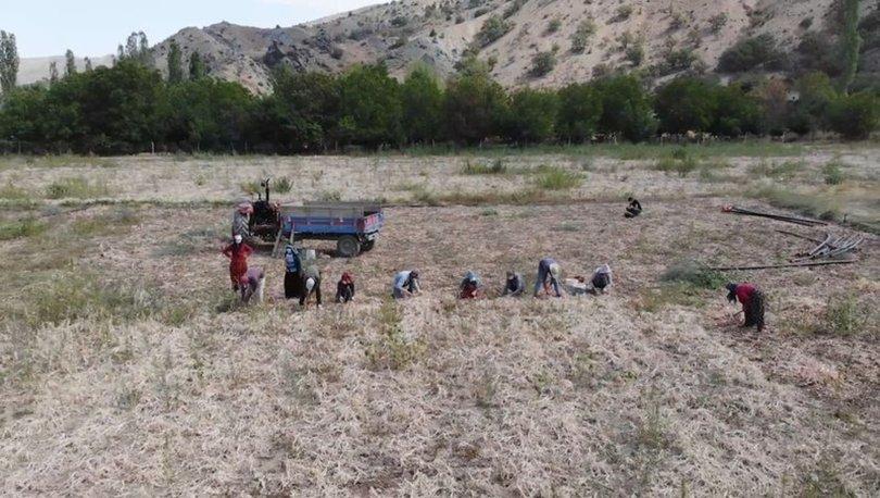 Kırıkkale'de Kovid-19 testi pozitif çıkan mevsimlik işçiler yurtlarda karantinaya alınacak