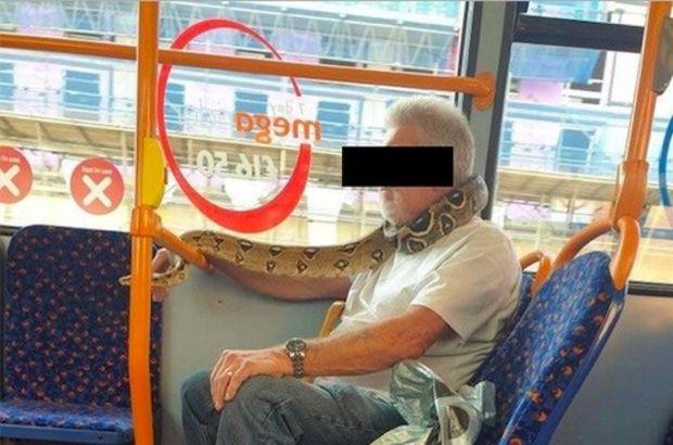 İngiltere'de bir kişi yılanı maske olarak kullandı!