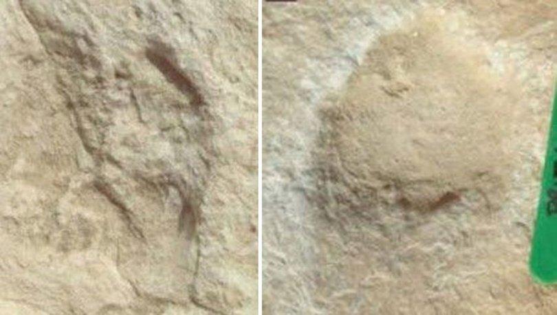 Çölde tespit edildi... 120 bin yıllık! - Haberler