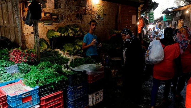 Lübnan'da 'şehir tarımı' neden yaygınlaşıyor?