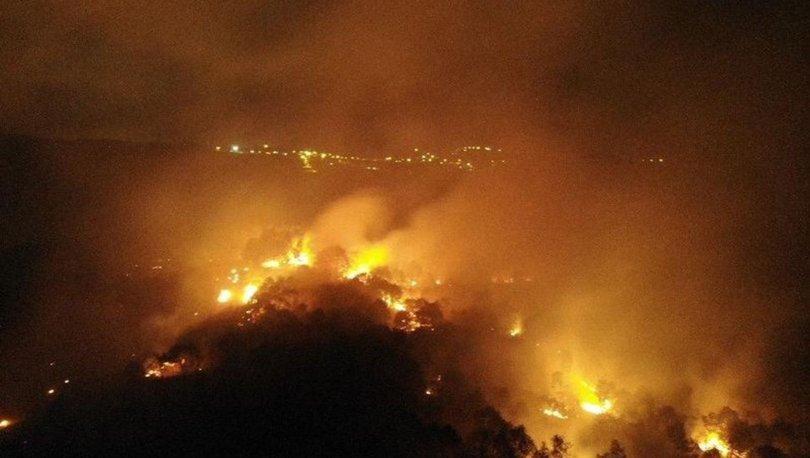 İstanbul'da orman yangını! Ekiplerin müdahalesi devam ediyor