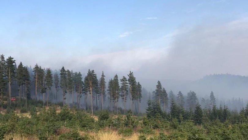 Son dakika haberi! Bolu'da ormanlık alanda yangın!