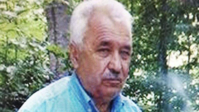 Bolu'da, oğlunun kestiği ağacın dalı başına düşen adam öldü