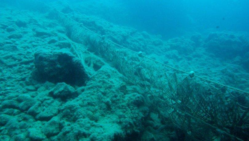 Denizde ekosistemi çökerten 'hayalet'