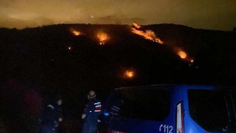 Ankara'da orman yangını kontrol altına alındı