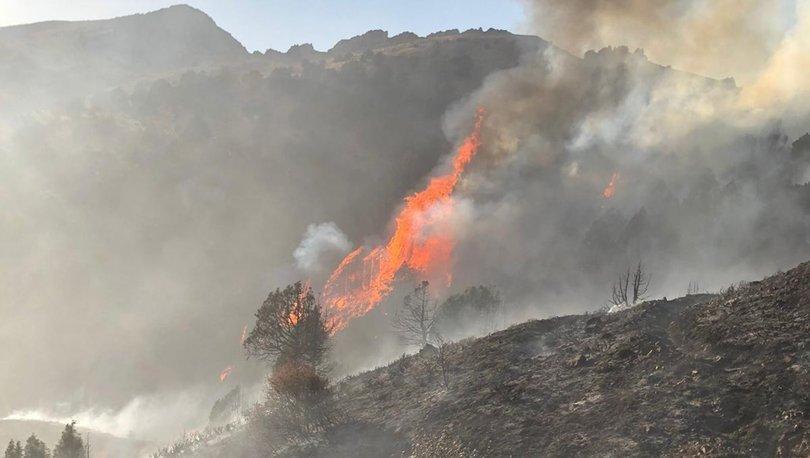 Son dakika: Kayseri'de 20 hektarlık alan küle döndü!