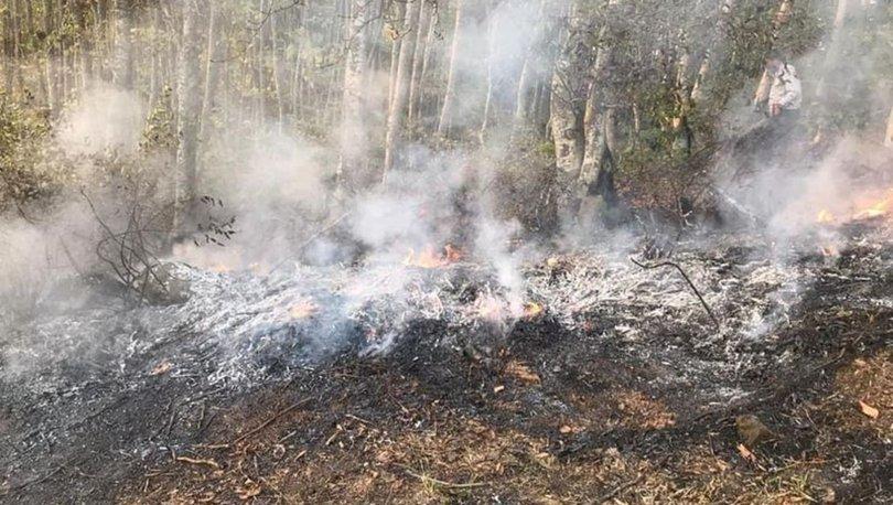 Orman yangınına müdahale eden Ahmet Çoban yanarak, hayatını kaybetti.