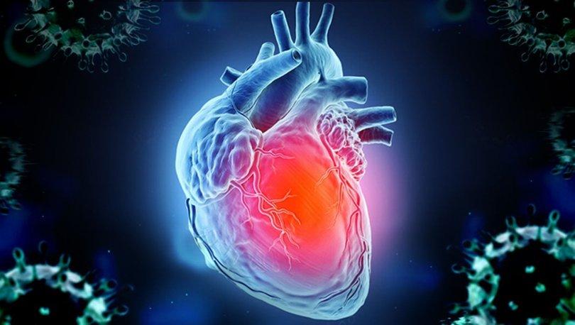Covid-19 kalp zarı ve kalp hücrelerini de etkiliyor! 20'li yaştakiler dikkat!
