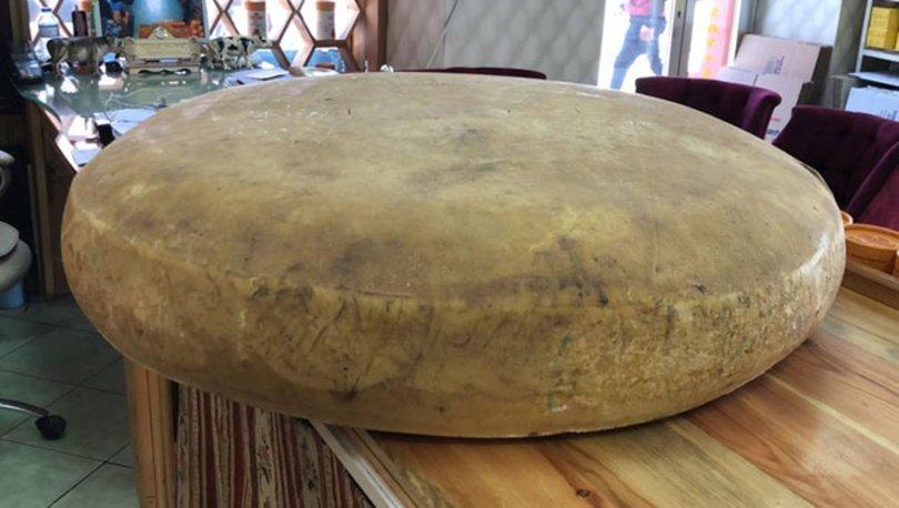 Dev gravyer peyniri şaşırttı