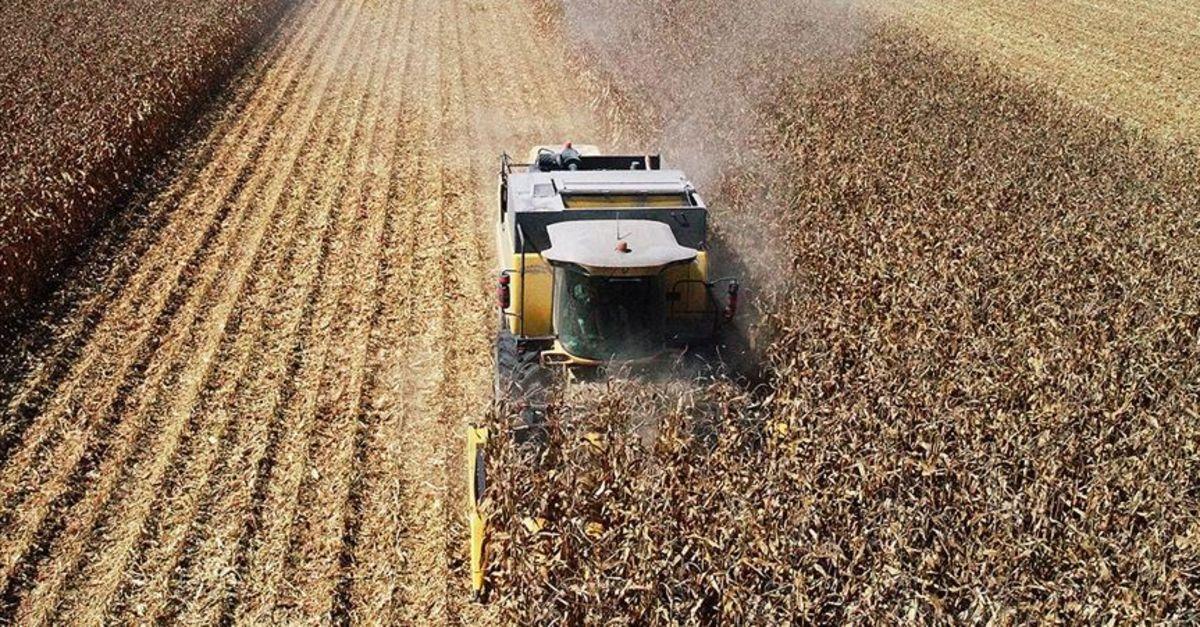 Tarım-GFE ağustosta arttı