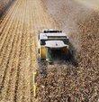 Türkiye İstatistik Kurumu, ağustos ayına ilişkin Tarım-GFE verilerini açıkladı. Tarımsal Girdi Fiyat Endeksi (Tarım-GFE), ağustosta geçen yılın aynı ayına göre yüzde 8,11, bir önceki aya göre yüzde 1,43 arttı.