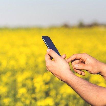 İş Bankası'ndan tarım girişimcilerine özel yarışma