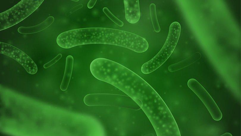 Hayalet probiyotikler Covid-19 ile savaşıyor! - Haberler