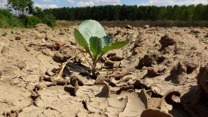 Son dakika haberi... 91 yılın en kurağı! O bölgede çiftçi endişeli