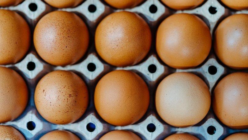 SON DAKİKA: Çalışma sonuçları geldi! Her gün yumurta yiyenler dikkat! - Haberler