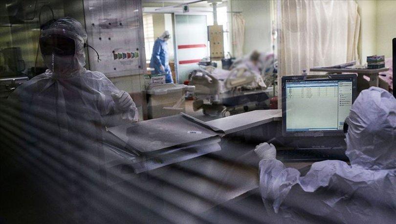 Koronavirüs son dakika: 17 Kasım Türkiye tablosu açıklandı: Yeni hasta sayısı...