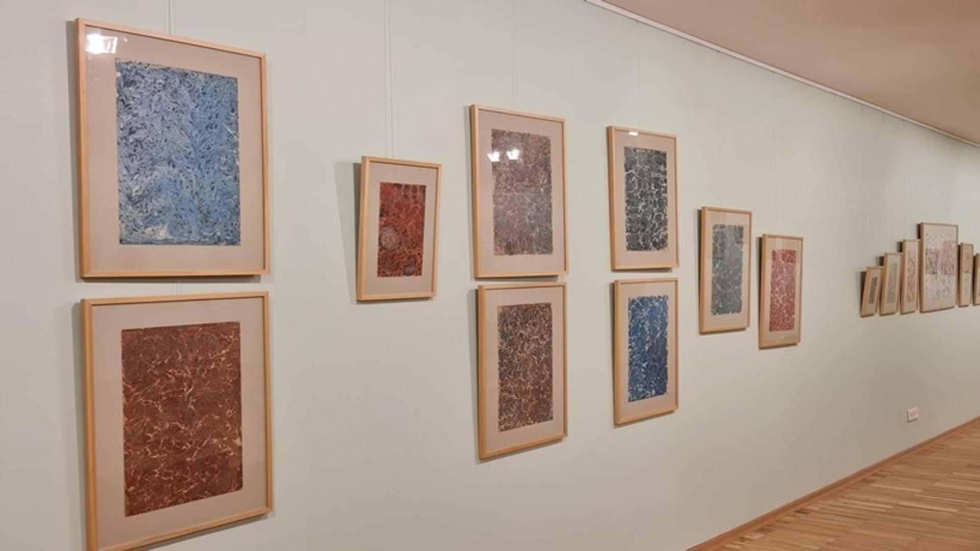 Ebru Sanatının 500 Yılı
