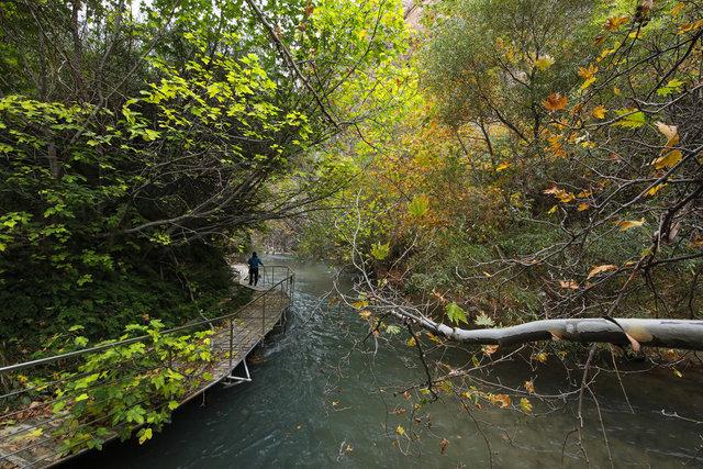 Tohma Kanyonu sonbahar renkleriyle görsel şölen sunuyor