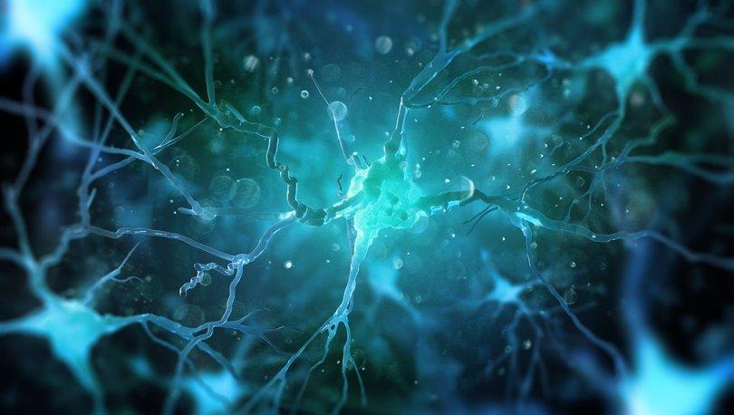 YÖK'ün girişimi ile beynin gizemini çözecek Türkiye'deki ilk ortak araştırma merkezi kuruldu