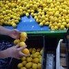 Limon ihracatı 82 milyon doları aştı