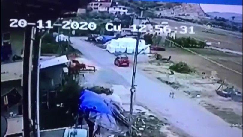 Son dakika haberi: Köpeği öldürdü, ifadesi şoke etti!