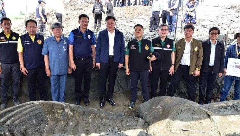 Tayland'da binlerce yıllık balina iskeleti bulundu