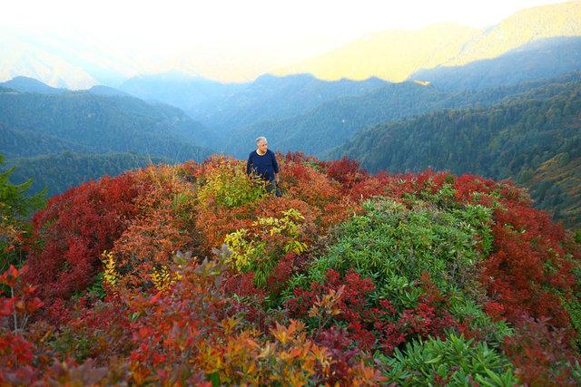 Artvin'de sonbahar güzelliği
