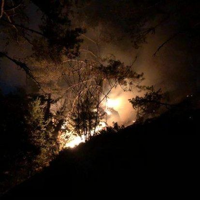 Kastamonu'daki orman yangını kontrol altına alındı
