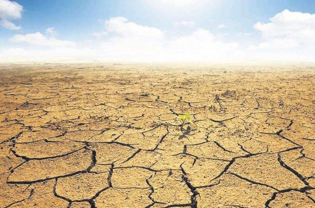 TMO'dan tarımsal kuraklık açıklaması