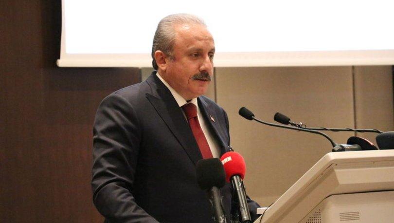 TBMM Başkanı Şentop, Kuzey Makedonya Cumhurbaşkanı Pendarovski ile görüştü