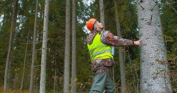 Tarım ve Orman Bakanlığı 826 işçi alımı ne zaman?