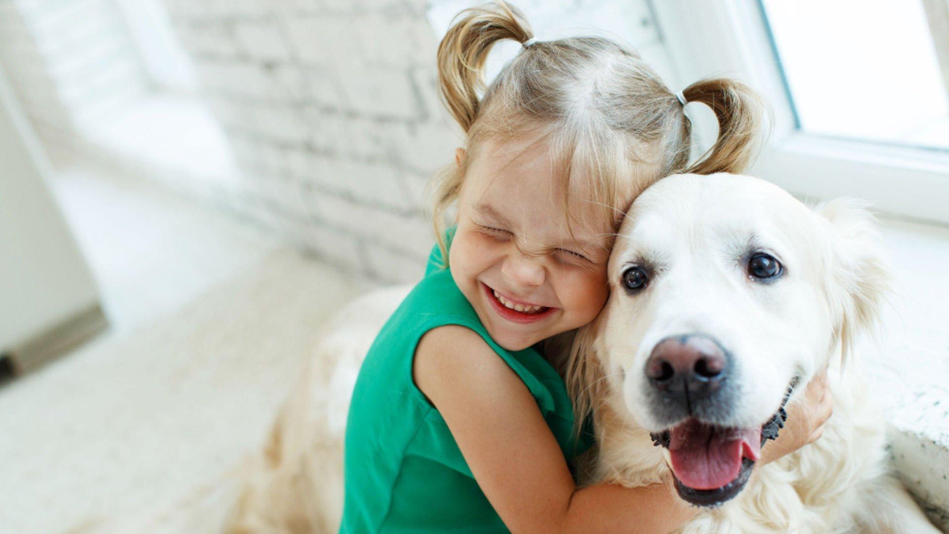Evcil hayvanlar sevgi ve şefkati öğretir