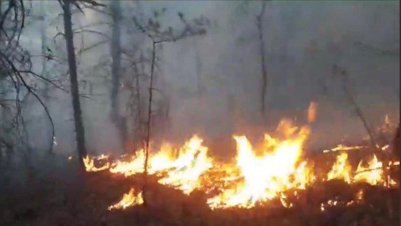 Son dakika haberi: Artvin'de korkutan yangın! - Haberler