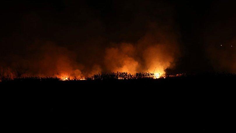 Bursa'da sazlık alanda yangın çıktı