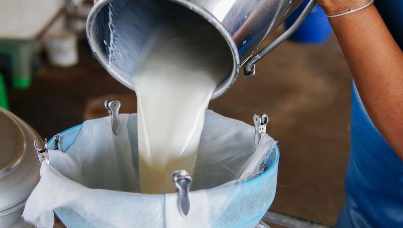 Toplanan inek sütü miktarı Kasım 2020'de yıllık bazda yüzde 1,2 arttı