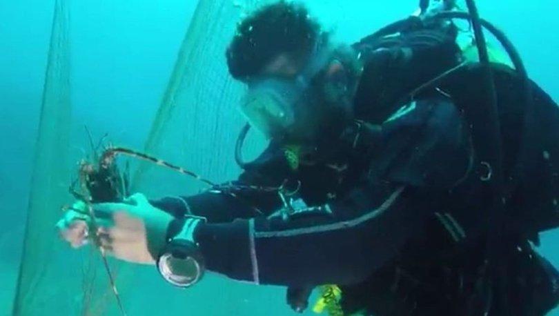 Hayalet ağlardan deniz çayırlarını ve deniz canlılarını kurtarabilmek için seferber oldular