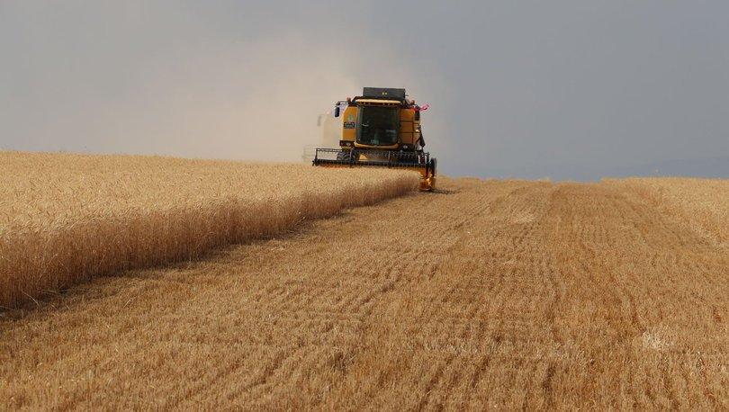Tarım ÜFE Aralık 2020'de aylık yüzde 2,58, yıllık yüzde 21,24 arttı