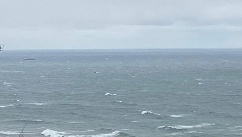 Bartın'da kuru yük gemisi battı!