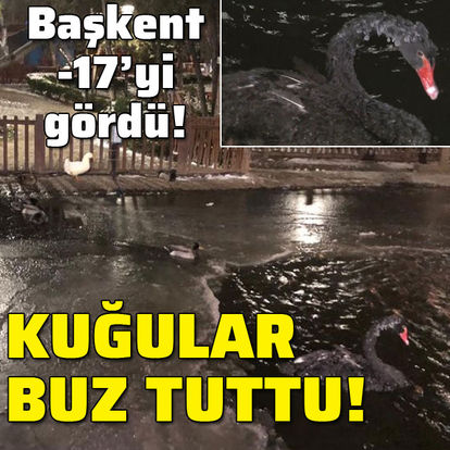 Ankara'da kuğular bile buz tuttu: -17!