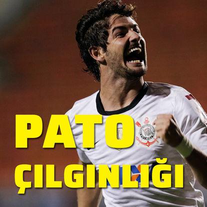 Pato çılgınlığı!