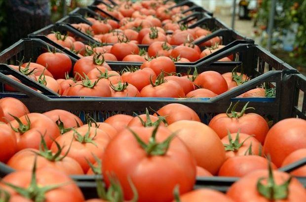 Bakan Pekcan açıkladı! Rusya'dan 'domates' hamlesi
