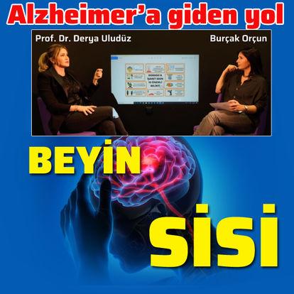 Alzheimer'a giden yol: Beyin Sisi