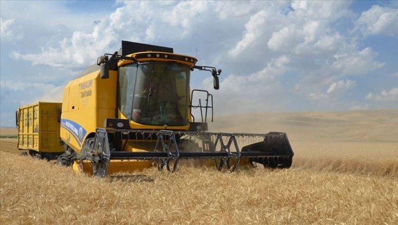 Tarım ürünleri ihracatında en fazla dış satımı hububat, bakliyat ve yağlı tohumlar sektörü yaptı