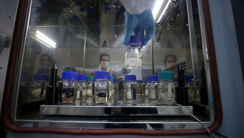 Kimya sektöründen ocakta 1,6 milyar dolarlık ihracat