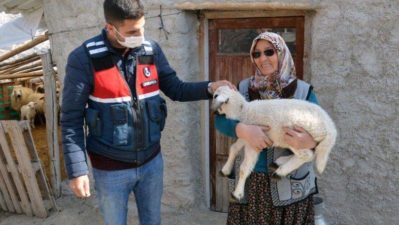 KAVUŞMA| Son dakika: Jandarma şehit annesini kuzusuna kavuşturdu