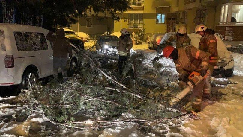 İstanbul'da kar yağışı nedeniyle ağaçlar devrildi