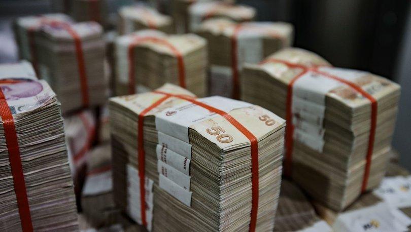 Hazine 2.4 milyar TL borçlandı